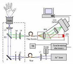 Схема биофотонного сканера